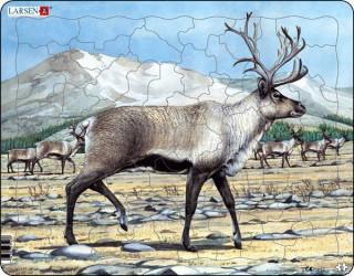 Larsen maxi puzzle 53 db-os Jávorszarvas DT5 Ajándéktárgyak