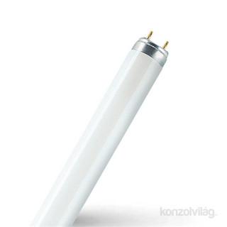 Osram Star 16,2 W/865 T8 1700 lumen 1,2m LED fénycső PC