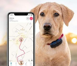 Tractive GPS DOG - Kutya nyomkövető Több platform