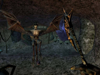 The Elder Scrolls III (3) Morrowind Game of the Year Edition PC
