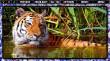 Pixel Puzzles Mosaics (PC) Letölthető thumbnail