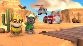 Paw Patrol: On Roll Nintendo Switch